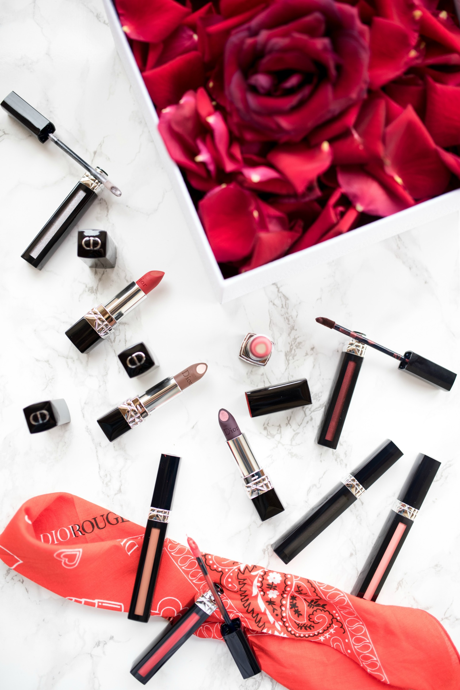 "Dior Rouge ""Liquid Lip stain"" et ""Double Rouge Lipstick"""